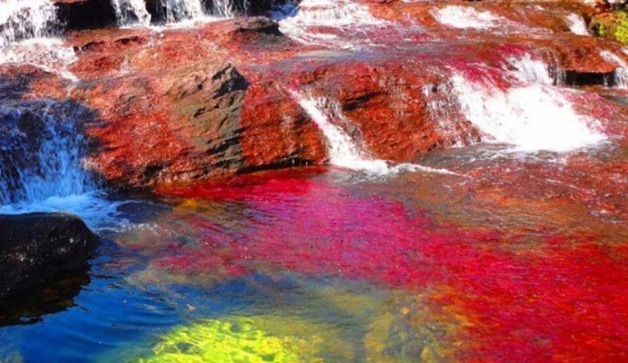 Rainbow River Of Colombia